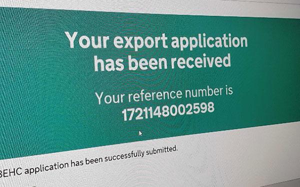 Czy potrzebujesz certyfikat EHC?